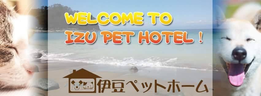 伊豆 ペットホテル